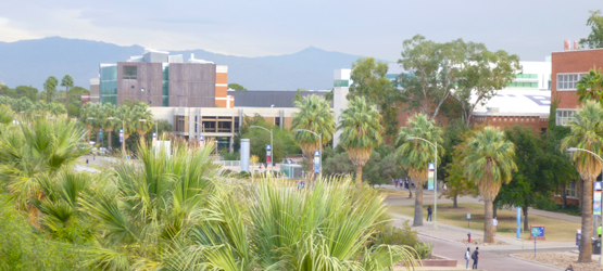 Early morning at the University of Arizona.